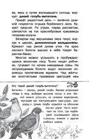 Русский лес — фото, картинка — 6