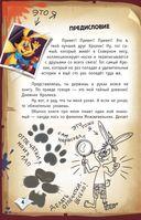 Фея-колтунья и волшебный портал — фото, картинка — 4