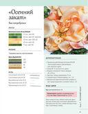 Розы из шелковых лент и органзы. Объемная вышивка — фото, картинка — 6