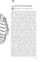 Модицина 2. Апология — фото, картинка — 10