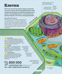 Как работает наука. Наглядные факты об устройстве нашего мира — фото, картинка — 8