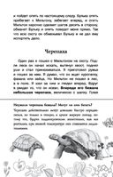 Биология — фото, картинка — 15