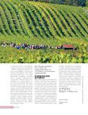 В погоне за вином. Винные туры по старому свету — фото, картинка — 12