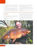 Особенности рыбной ловли в озерах, прудах, реках — фото, картинка — 5
