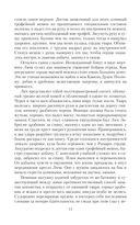 Полет сокола — фото, картинка — 11
