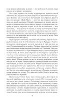 Полет сокола — фото, картинка — 9