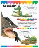Рептилии и амфибии — фото, картинка — 5
