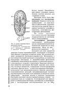 Биология. Для поступающих в вузы — фото, картинка — 12