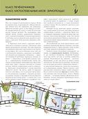 Растения. Полная энциклопедия — фото, картинка — 15