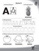 Большие прописи к логопедическому букварю — фото, картинка — 3