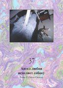 Магическая сила тонкого мира (44 карты в картонной коробке + брошюра с инструкцией) — фото, картинка — 9