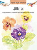 Цветы — фото, картинка — 1