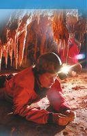 Всё самое интересное о динозаврах в одной книге — фото, картинка — 9