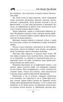 Юджин - повелитель времени. Книга 1. Мир Трех Лун — фото, картинка — 13