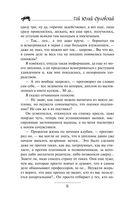 Юджин - повелитель времени. Книга 1. Мир Трех Лун — фото, картинка — 7