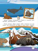 Животные нашей планеты — фото, картинка — 11
