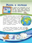 Животные нашей планеты — фото, картинка — 4