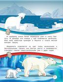 Животные нашей планеты — фото, картинка — 7