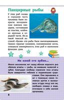 Животные — фото, картинка — 6