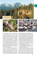 Прогулки по Черногории — фото, картинка — 11