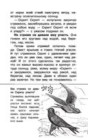 Васюткино озеро — фото, картинка — 13