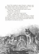 Волк по имени Странник — фото, картинка — 8