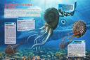 Подводные обитатели — фото, картинка — 4