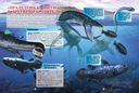 Подводные обитатели — фото, картинка — 5