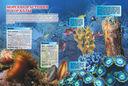 Подводные обитатели — фото, картинка — 7