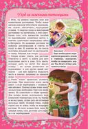 Большой подарок для девочек — фото, картинка — 14