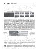 Unity в действии. Мультиплатформенная разработка на C# — фото, картинка — 9