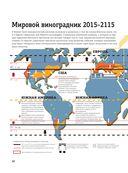 Вина стран Нового Света — фото, картинка — 13