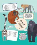 Животные. 500 удивительных фактов — фото, картинка — 12