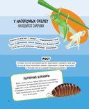 Животные. 500 удивительных фактов — фото, картинка — 13