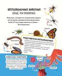 Животные. 500 удивительных фактов — фото, картинка — 14
