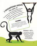 Животные. 500 удивительных фактов — фото, картинка — 10