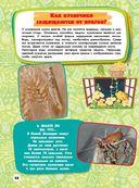 Большая детская энциклопедия для почемучек — фото, картинка — 12