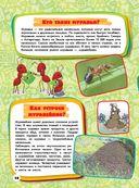Большая детская энциклопедия для почемучек — фото, картинка — 14