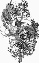 Тарзан из племени обезьян. Возвращение Тарзана. Тарзан и его звери — фото, картинка — 3