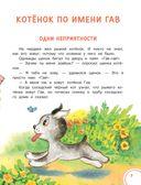 Котёнок по имени Гав — фото, картинка — 5