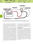 Диагностика и ремонт автомобильного электрооборудования — фото, картинка — 12