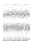 Дальневосточный штиль — фото, картинка — 9