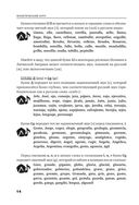 Испанский язык для начинающих. Сам себе репетитор — фото, картинка — 14